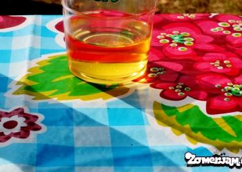 zomerjam-2013-huigpark-leiden-by-mamarazzi-68